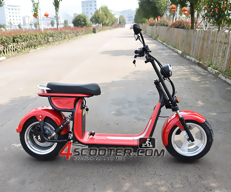 4000W Fat tire Citycoco Electric Scooter
