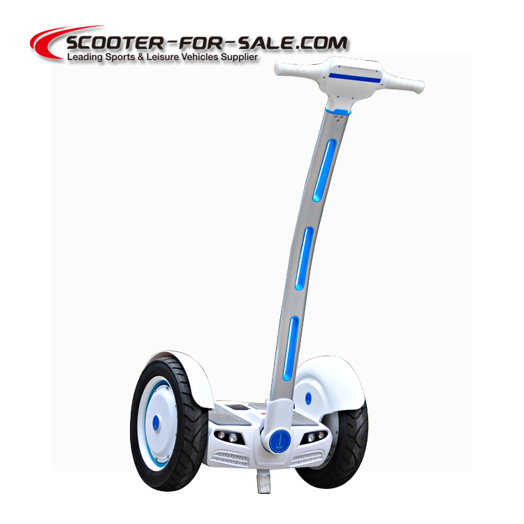 350W Dual Motor Segway Scooter,2 wheel electric scooter