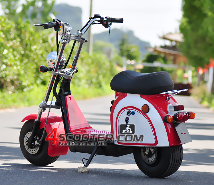 EEC COC Approved 2000W 4X4 2 wheel drive Junior Citycoco Electric Scooter